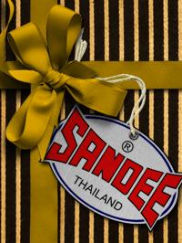 £100 Sandee Gift Card