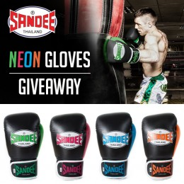 NEON GLOVES GIVEAWAY WINNER